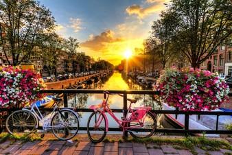 Амстердам отказался от проведения Евровидения 2020