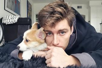 Алексей Воробьев подарил себе на день рождения щенка корги